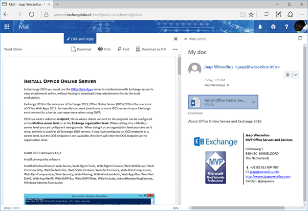 microsoft office online server